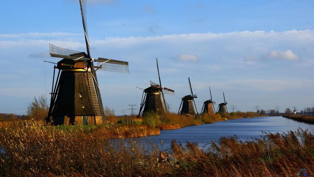 hollanda vize başvurusu