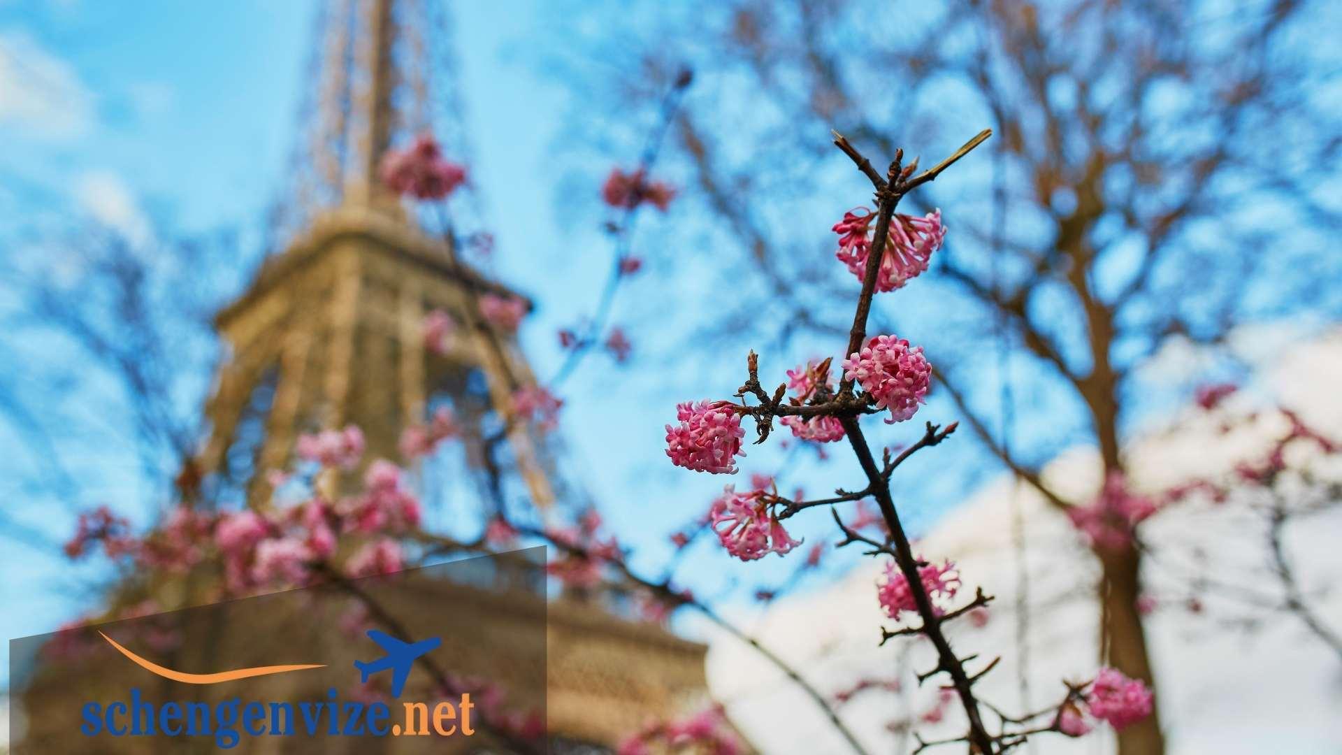 Fransa Turistik Vize