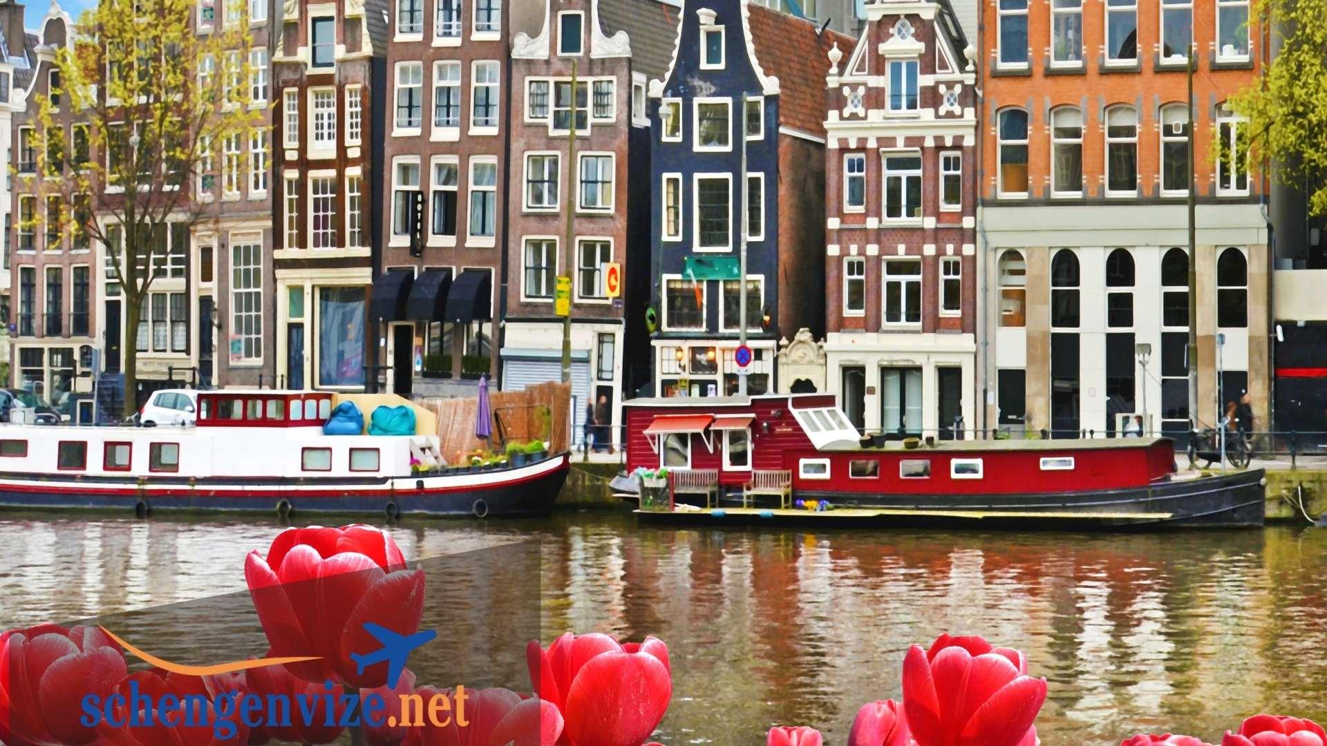 Hollanda Ticari Vize