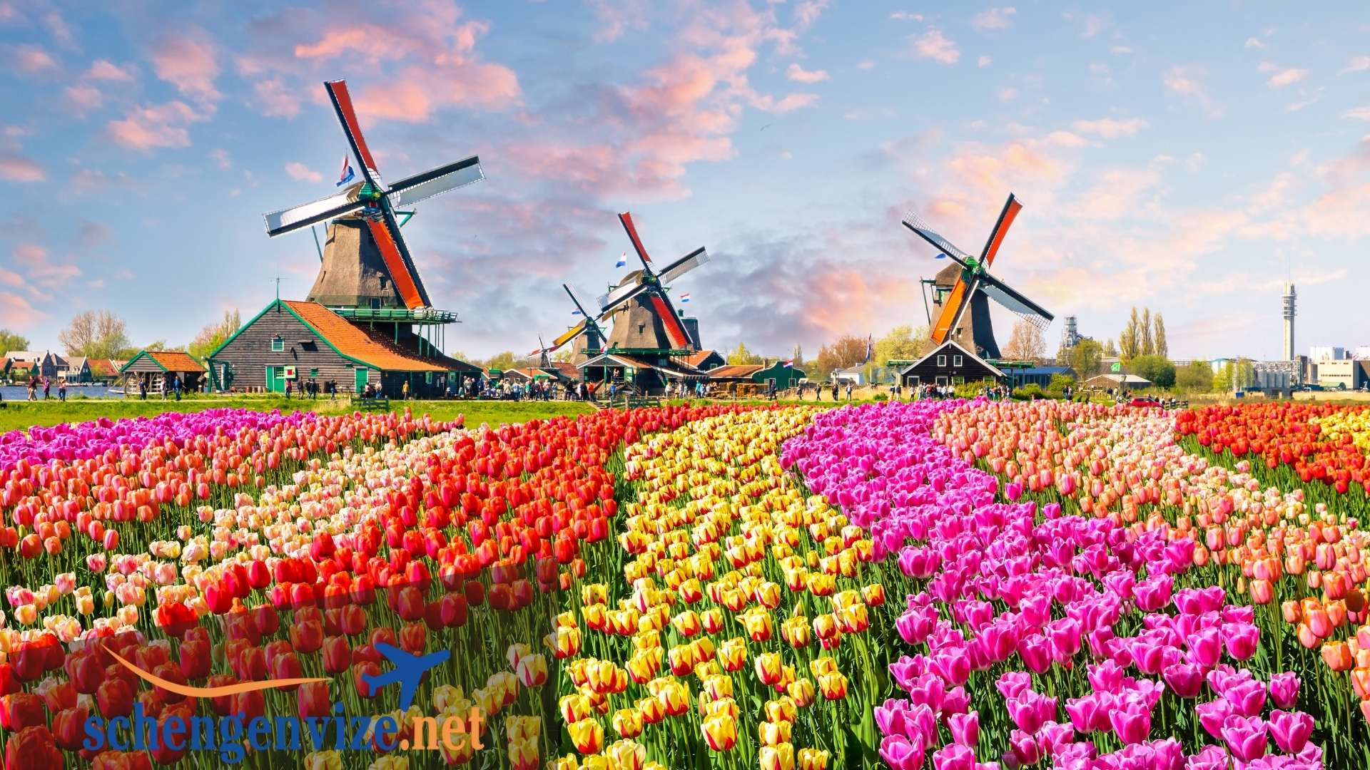 Hollanda Turistik vize için gerekli evraklar