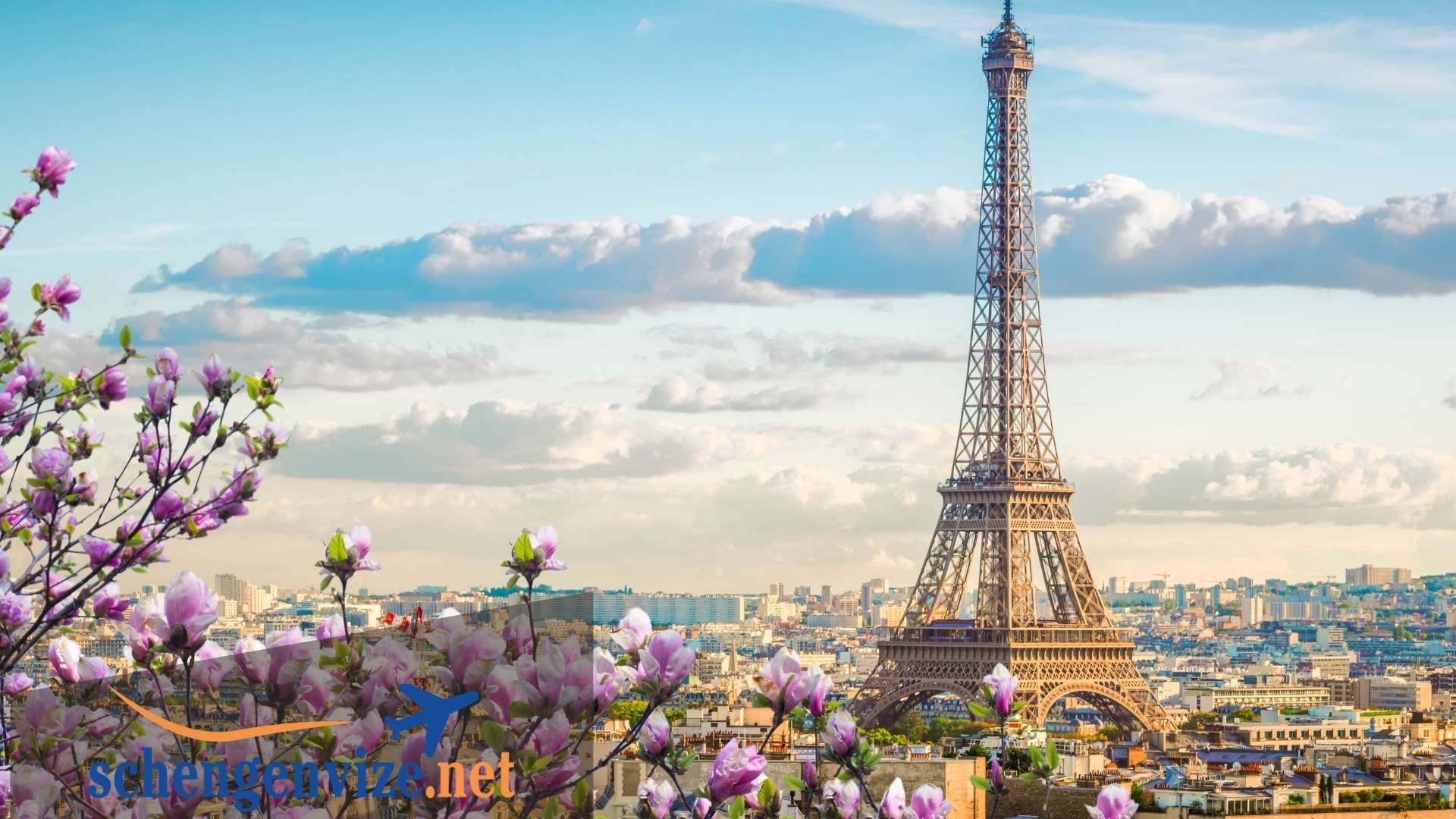 Paris Vizesi