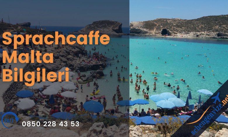 Sprachcaffe Malta Bilgileri