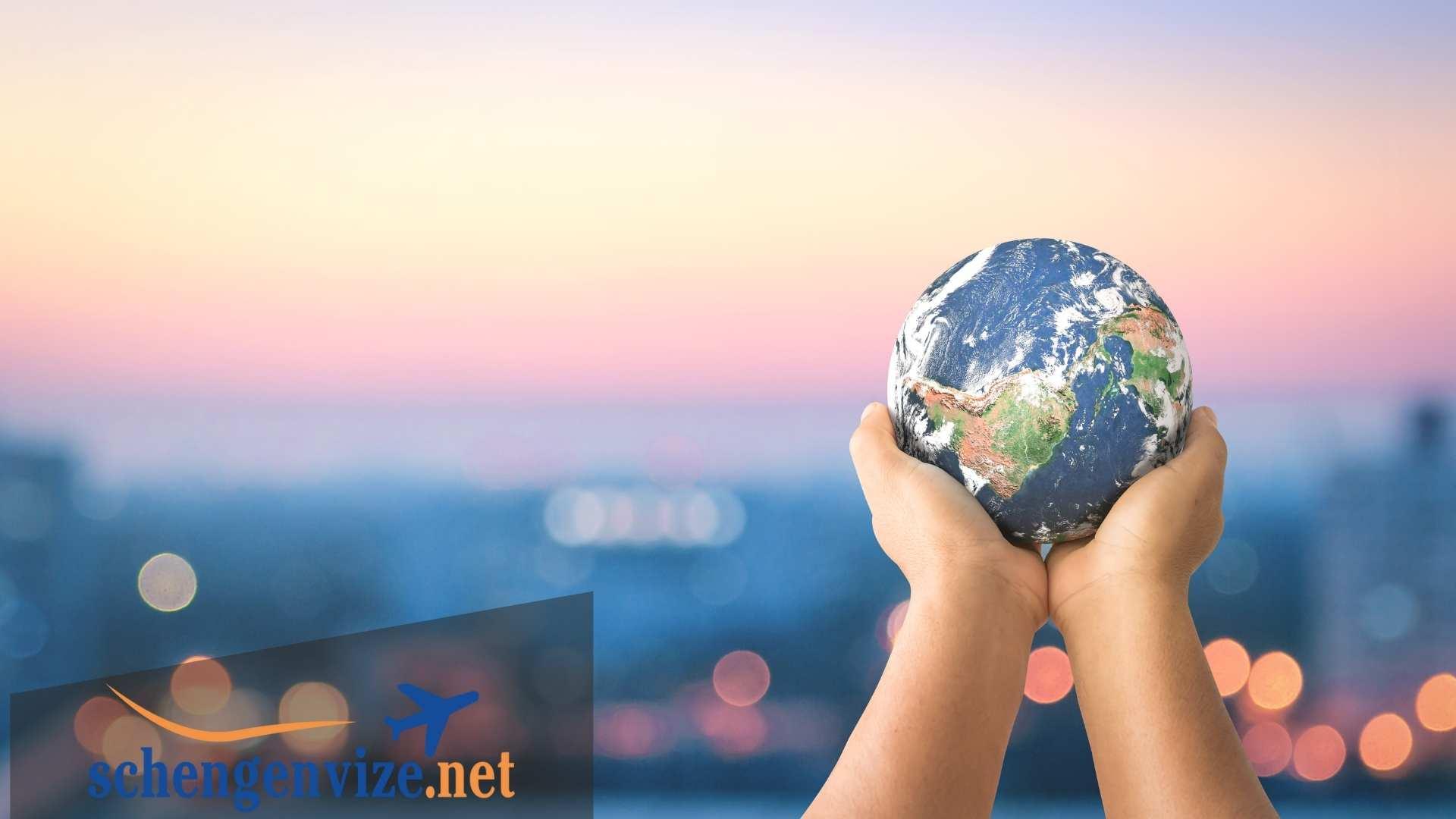 VFS Global Ne İş Yapar?